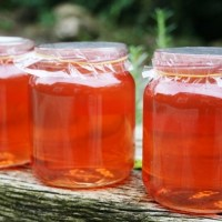 Forgotten Fruits – crab apple jelly