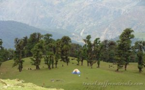 Hills and meadows of Chopta