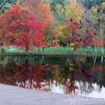 new england fall foliage –  the most scenic drives on a day trip