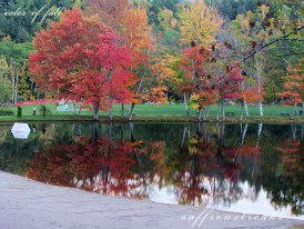 fall color mirror lake