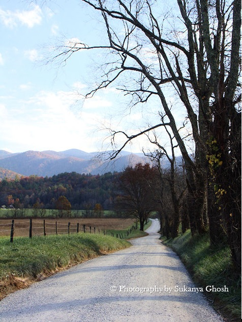Cades cove road smoky mountain