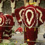 Lal Bagh flower show August 2014 & Dastkar handicraft fair