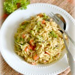 Orzo Pasta Salad With Roasted Vegetables – Wholesome One Pot Meal