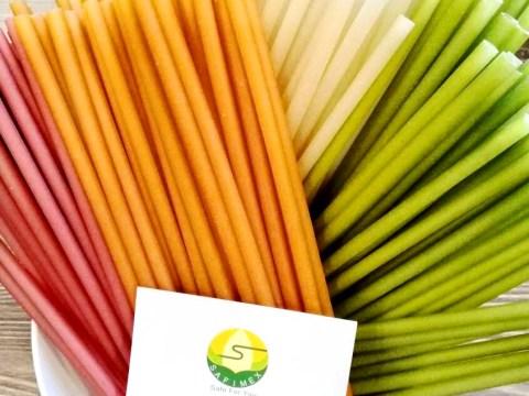 Rice flour Drinking Straws SAFIMEX EXPORT