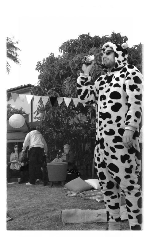 DJ   Cameraman   Cow