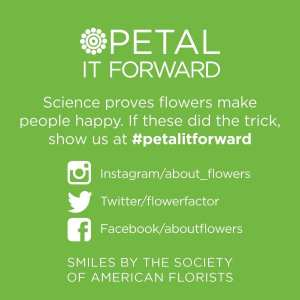 """Green stickers on the bouquets and the SAF """"street team"""" encouraged consumers, to post selfies with their flowers using the hashtag #petalitforward on social media."""