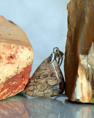 Mushroom Rhyolite, free form shape gemstone, with necklace