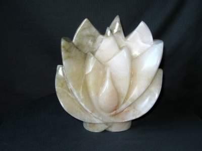 Lotus alabaster