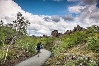 Dimmuborgir Lava Fields via Lake Myvatn Tour from Akureyri