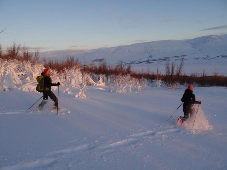 Akureyri Snowshoeing Tour