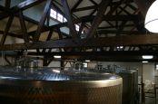 New Kent Winery - 06