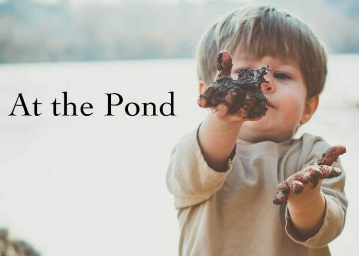 At the Pond: Week One