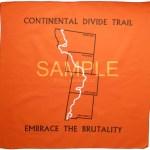 Sample+CDT+Orange+bandana+for+Amazon