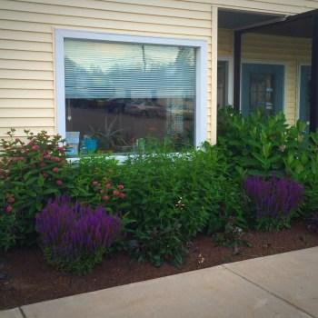 Sage Integrative Medicine sage garden