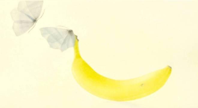 Mikio Watanabé - Une banane - 2014 - Manière noire