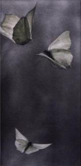 Mikio Watanabé. Voltige I. 2009. Manière noire.