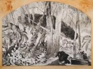 Gérarddiaz - Eucalyptus