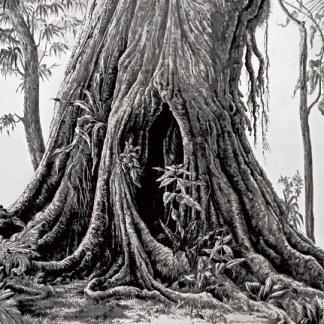 Exposition O sopro da natureza – Le souffle de la nature de G. Querrien et F. Houtin