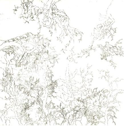 Agnès Dubart - Labyrinthe végétal