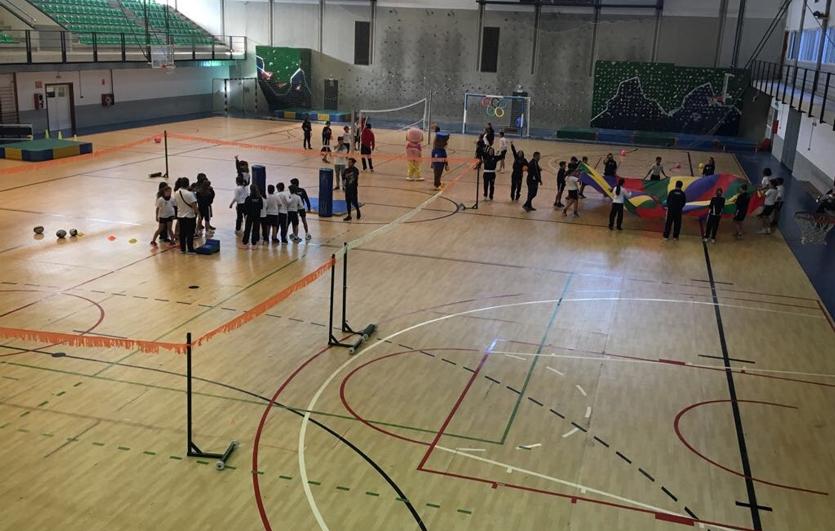 Proyecto-UA-Colegio-Sagrada-Familia-de-Elda