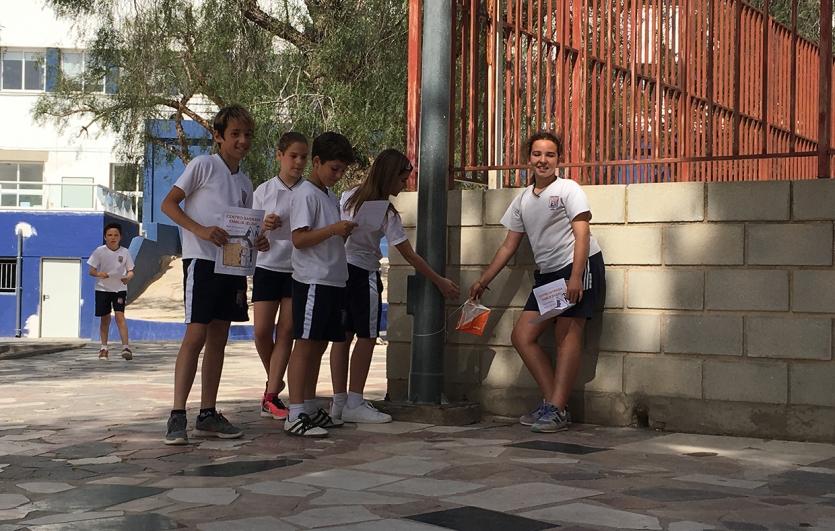 Deporte-de-Orientación-Colegio-Sagrada-Familia-de-Elda