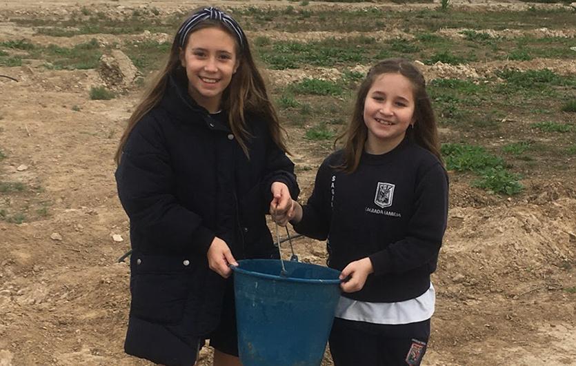 Día-del-Árbol-2020-Colegio-Sagrada-Familia-de-Elda