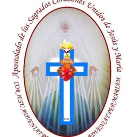 cropped-valida-emblema-Apostolado.jpg