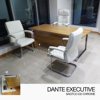 DANTE EXECUTIVE-SAGTCO-D2-CHROME-1--OFD-EX-101