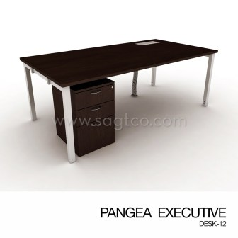 PANGEA EXECUTIVE DESK-12--OFD-EX-088