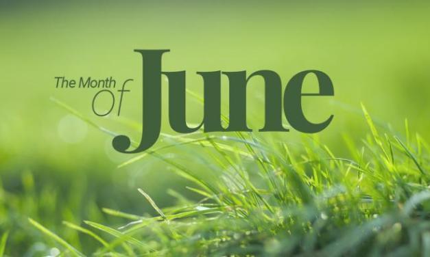 Daftar Saham dengan Return Positive di Bulan Juni