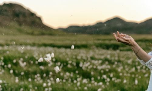 கரிசல் காட்டில் பூத்த பருத்திப் பூ ❤ (கவிதை வடிவில் ஒரு கரிசல் காட்டுக் கதை) –  பகுதி 1 –  ✍ சசிகலா எத்திராஜ்