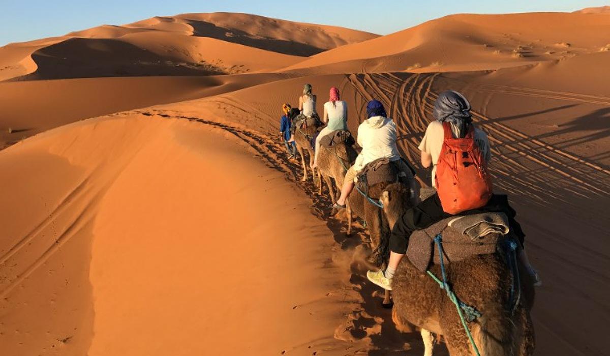 2 Nights camel trekking in Merzouga