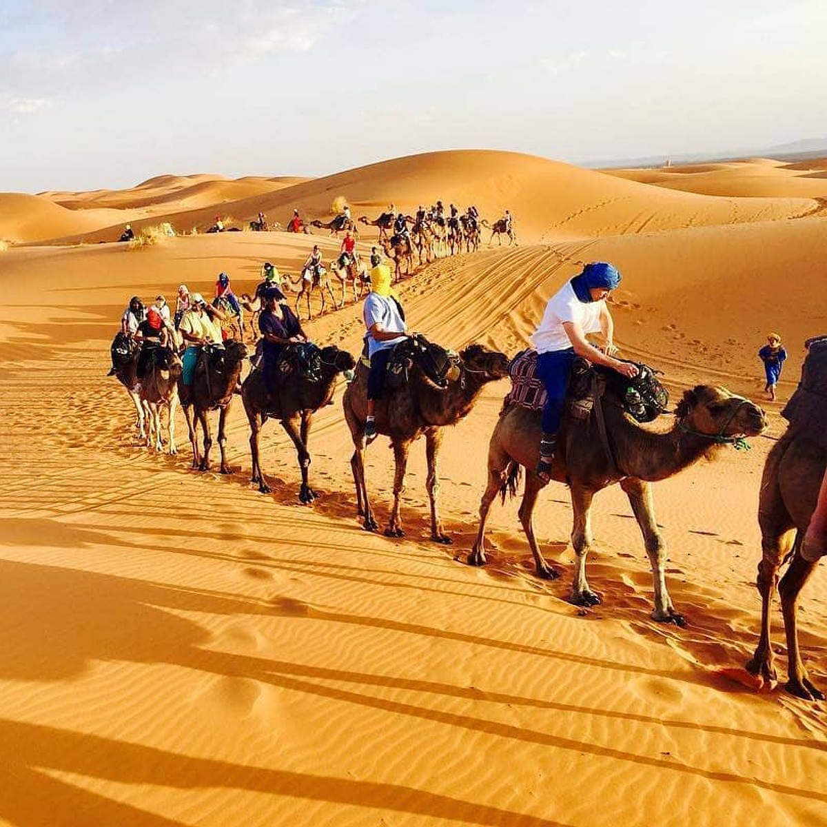 8 days tour from tangier to marrakech