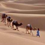 Fes to merzouga desert tour 3 days