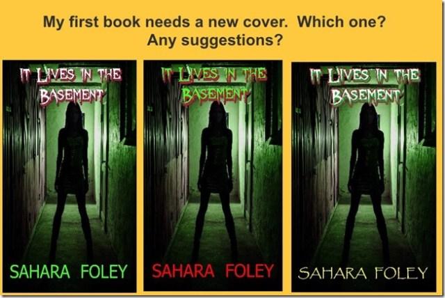 BASEMENT NEW COVERS