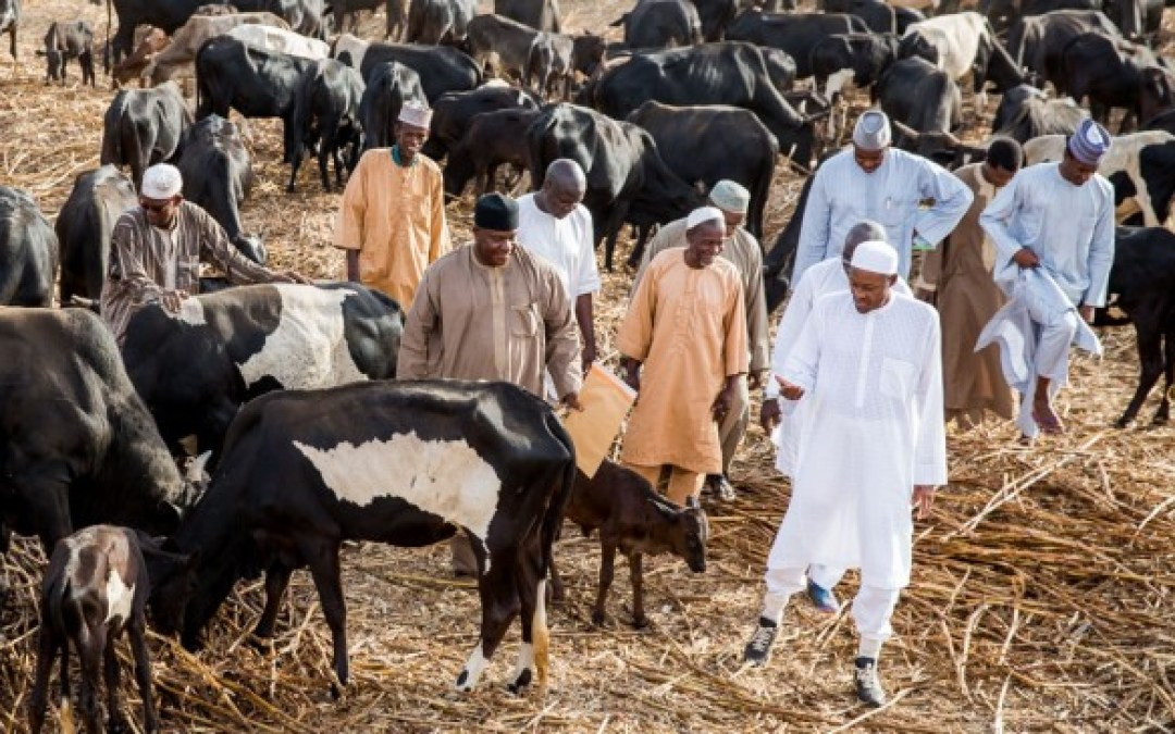 Five Times Buhari Packaged, Repackaged Unpopular Policies In Favour Of Fulani Herdsmen