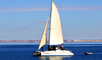 Click to find out more about catamaran sailing adventures