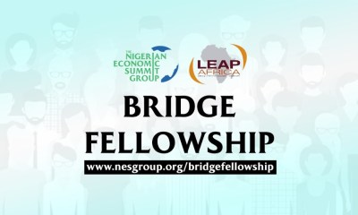 Why you need to be a part of the NESG Bridge Fellowship By Olutayo IRANTIOLA.