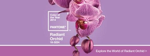radiant_orchid_HomeSlider_Final