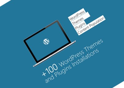 hundreds of wordpress themes & plugins installs