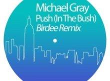 Michael Gray - Push (In The Bush) (Birdee Remix)