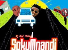 Dj Red Money ft Piro Mangena - Sokumnandi