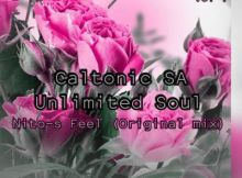 Caltonic SA ft Unlimited Soul - Nito S Feel