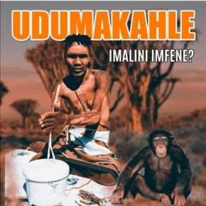 EP: Dumakahle - Imalini Imfene
