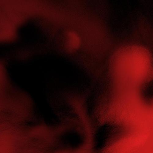 Album: $NOT - Beautiful Havoc