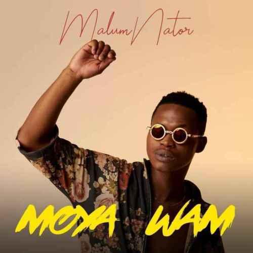 MalumNator ft De Mthuda, Ntokzin & MFR Souls - Aw'Yebo