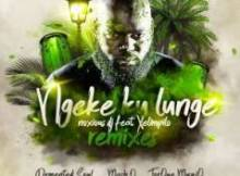 Noxious DJ ft Xelimpilo - Ngeke Ku Lunge (TorQue MuziQ Dub)