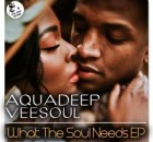 EP: Aquadeep & Veesoul - What The Soul Needs