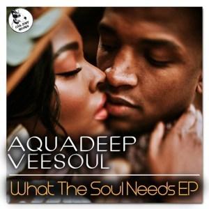 EP: Aquadeep & Veesoul - What The Soul Needs