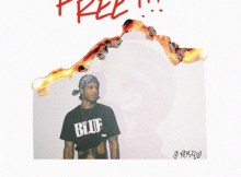 G Perico - Free